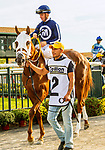 SEPT 25, 2021: Allworthy post parade for the Gr.1 Cotillion Stakes, for 3-year old fillies, going 1 1/16mile, at Parx Racing, Bensalem, PA. Sue Kawczynski/Eclipse Sportswire/CSM