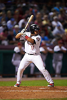 Tri-City ValleyCats catcher Richard Gonzalez (11) at bat during a game against the Brooklyn Cyclones on September 1, 2015 at Joseph L. Bruno Stadium in Troy, New York.  Tri-City defeated Brooklyn 5-4.  (Mike Janes/Four Seam Images)