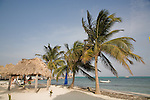 Palm trees and palapas on the beach in front of Ramon's Village Resort in San Pedro, Ambergris Caye, Belize