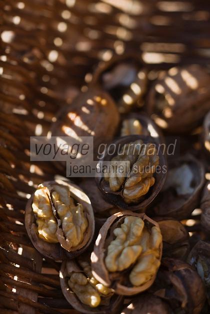 Europe/France/Aquitaine/24/Dordogne/Vallée de la Dordogne/Périgord Noir/Env de La Roque-Gageac: AOC Noix du Périgord