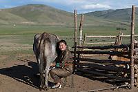 Mongolia, Ovorkhangai Province, Kharakhorum, Orkhon Bag. Nomad woman milking cow.