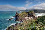 Piha Beach. Auckland Region. New Zealand.