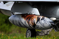 A fuel tank painted with a tiger paint scheme. Nato Tiger Meet is an annual gathering of squadrons using the tiger as their mascot. While originally mostly a social event it is now a full military exercise. Tiger Meet 2012 was held at the Norwegian air base Ørlandet.