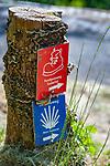 Deutschland, Baden-Wuerttemberg, Region Heilbronn-Franken, am Ende des Taubertals, Wertheim: hier muendet die Tauber in den Main, Wanderwegweiser fuer den Jakobsweg Main-Taubertal und den Panoramaweg Taubertal | Germany, Baden-Wuerttemberg, Tauber Valley, Wertheim: hiking trail sign for Camino de Santiago (Main-Franconia) and Panorama-Trail (Tauber Valley)