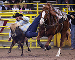 1/24/09--Photo by Rick Davis--PRCA cowboy Orlando Jordan of Tulsa, Oklahoma turned in a 5.4 second steer wrestling run during action at the 103rd National Western Stock Show and Rodeo in Denver, Colorado.