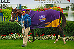 TORONT,CANADA-SEP 15: Decorated Invader,ridden by Irad Ortiz jr,wins the Summer Stakes at Woodbine Race Track on September 15,2019 in Toronto,Ontario,Canada. Kaz Ishida/Eclipse Sportswire/CSM