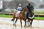 February 28, 2021: Matapan #11 , ridden by Terry J. Thompson in the Downthedustyroad Breeders Stakes for trainer Isai V. Gonzalez at Oaklawn Park in Hot Springs,  Arkansas.  Ted McClenning/Eclipse Sportswire/CSM