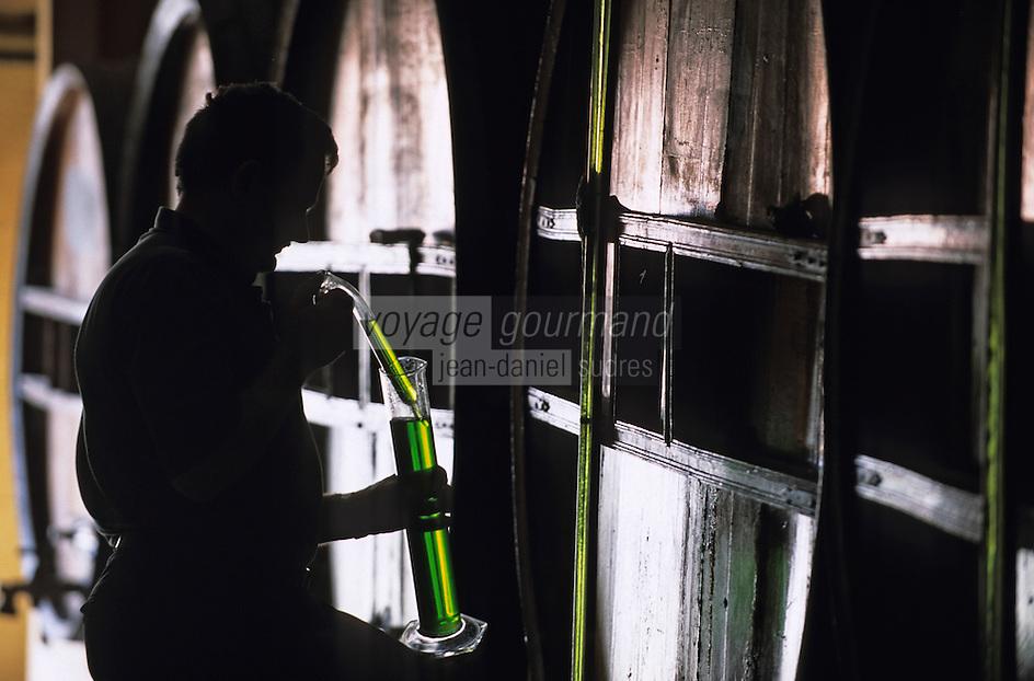 Europe/France/Auvergne/43/Haute-Loire/Le Puy-en-Velay: Dans les chais de la distillerie de verveine du Velay: Pagès   //   France, Haute Loire, Le Puy en Velay, RN88, exit Zl Blavozy, Pages Distillery, In the cellars of the distillery Velay verbena