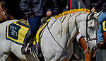 October 3, 2020: Scenes from during Preakness Stakes Day at Pimlico Race Course in Baltimore, Maryland. Scott Serio/Eclipse Sportswire/CSM