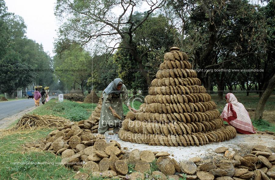 INDIA Uttar Pradesh, women in a village dry cow dung for cooking fuel / INDIEN Uttar Pradesh, Frauen in einem Dorf trocknen Kuhfladen die zum Kochen genutzt werden