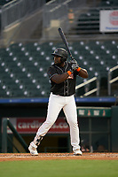 Jupiter Hammerheads Lazaro Alonso (44) at bat during a Florida State League game against the Lakeland Flying Tigers on August 12, 2019 at Roger Dean Chevrolet Stadium in Jupiter, Florida.  Jupiter defeated Lakeland 9-3.  (Mike Janes/Four Seam Images)