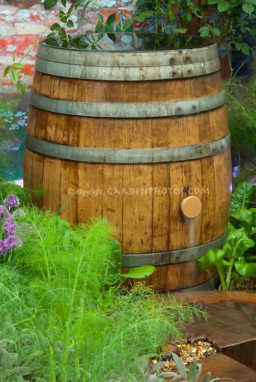 Rain Barrel in Garden collecting water