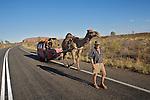 Parc national d'Uluru- Kata Tjuta.Voyageur allemand qui traverse le continent rouge seul avecses chameaux depuis près de six ans devant Uluru