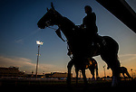 LOUISVILLE, KY - MAY 04: A horse and rider walk onto the track to prepare for the Kentucky Derby at Churchill Downs on May 04, 2016 in Louisville, Kentucky.(Photo by Alex Evers/Eclipse Sportswire/Getty Images)