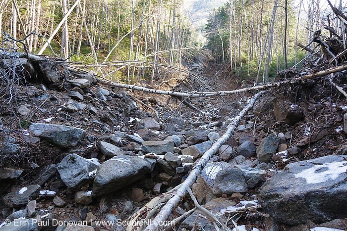 Looking up a landslide on the side of the Hancock Mountain Range in the Pemigewasset Wilderness in Lincoln, New Hampshire in November 2011. Heavy rains from Tropical Storm Irene in 2011 caused an old landslide that was in the process of being natural regenerated to slide again. The natural process of regeneration must start all over. The new landslide looks to follow the track of the old one. This storm caused extensive damage along the East Coast of the United States and the White Mountains, New Hampshire.