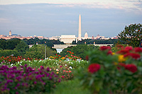 Washington DC Skyline National Mall Lincoln Memorial Washington Monument US Capitol Washington DC Art - - Framed Prints - Wall Murals - Metal Prints - Aluminum Prints - Canvas Prints - Fine Art Prints Washington DC Landmarks Monuments Architecture