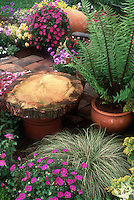 Colorful container garden on brick patio, tree trunk wooden round bench on planter seat, terracotta pots, ferns, ornamental grass, Geraniums, mixed flowers in pots