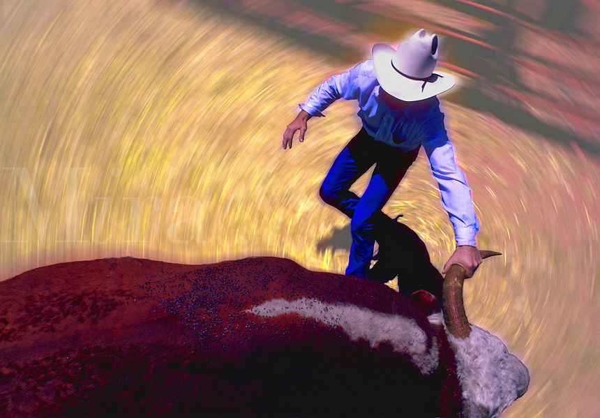 Bull Spin. Abstract action color image. Real New Mexico Cowboy has a bull by the horn, both are spinning. Metaphor for a bull stock market. Digitally enhanced photograph. Cowboy and Bull. New Mexico.