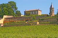 The Clos de la Madeleine and vineyard below Chateau Magdelaine Saint Emilion Bordeaux Gironde Aquitaine France