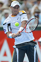 MELBOURNE, AUSTRALIA - JANUARY 12: LLEYTON HEWITT (AUS) in action on the way to winning the 2013 AAMI Classic event against JUAN MARTIN DEL POTRO (ARG) 6-1 6-4 at the Kooyong Lawn Tennis Club in Melbourne, Australia. (Photo Sydney Low)