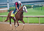 Will Take Charge, trained by D. Wayne Lukas, works out in preparation for the Kentucky Derby at Churchill Downs on April 29, 2013.