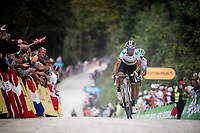 World Champion Alejandro Valverde (ESP/Movistar) up the gravel section in the final stretch to the finish line up La Planche des Belles Filles<br /> <br /> Stage 6: Mulhouse to La Planche des Belles Filles (157km)<br /> 106th Tour de France 2019 (2.UWT)<br /> <br /> ©kramon
