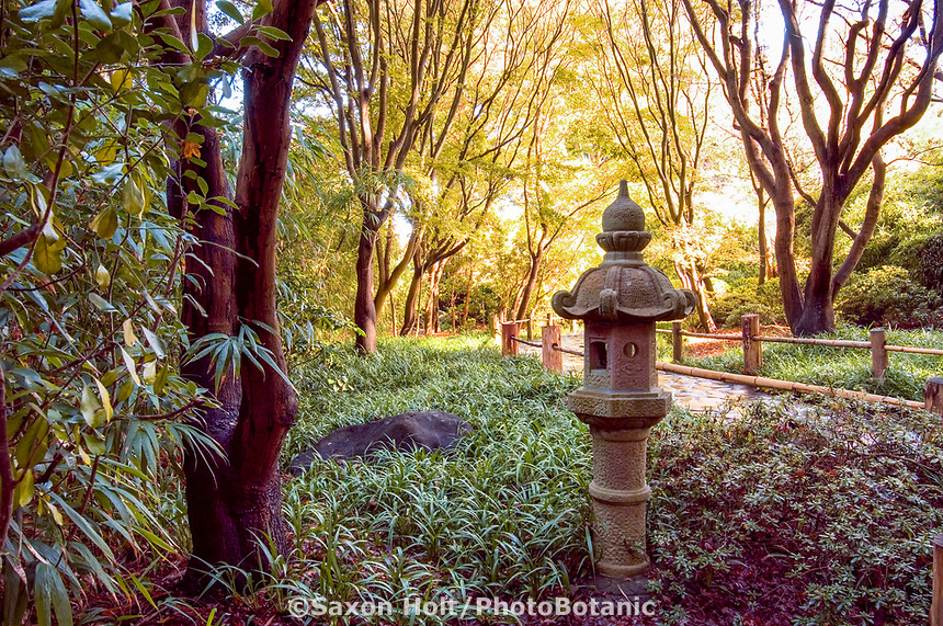 Japanese Tea Garden in Golden Gate Park, San Francisco, California. Stone lantern.