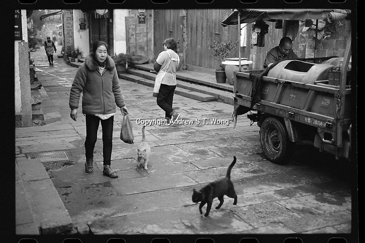 Nianbadu Township, Jiangshan City, Zhejiang Province - A woman buys a fish from a fishmonger as cats look on early in the morning, December 2020., The ancient township of Nianbadu is located along the Qiantang River.