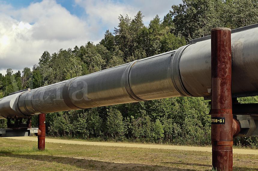 Trans Alaska oil pipeline.