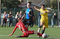 20191026 – Brugge, BELGIUM : Brugge's Frieke Temmerman (M) and goalkeeper Ianthe Meerschaert (L) with Standard's Lola Wajnblum (R) pictured during a women soccer game between Club Brugge Dames and Standard Femina de Liege on the seventh matchday of the Belgian Superleague season 2019-2020 , the Belgian women's football  top division , Saturday 26 th October 2019 at the synthetic terrain 4 at the Jan Breydel site in Brugge  , Belgium  .  PHOTO SPORTPIX.BE | DIRK VUYLSTEKE