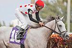Zo Impressive with jockey Rajiv Maragh winning at Gulfstream Park, Hallandale Beach Florida.