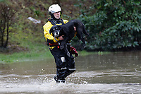 Pictured: A dog is rescued by a fireman in Nantgarw, Wales, UK. Sunday 16 February 2020<br /> Re: Residents from Oxford Street in the village of Nantgarw had to be evacuated in inflatable boats by the Fire Service after rover Taff burst its banks in south Wales, UK.