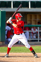 Michael Snyder (29) of the Orem Owlz at bat against the Billings Mustangs at Brent Brown Ballpark on July 22, 2012 in Orem, Utah.  The Mustangs defeated the Owlz 13-8.  (Brian Westerholt/Four Seam Images)