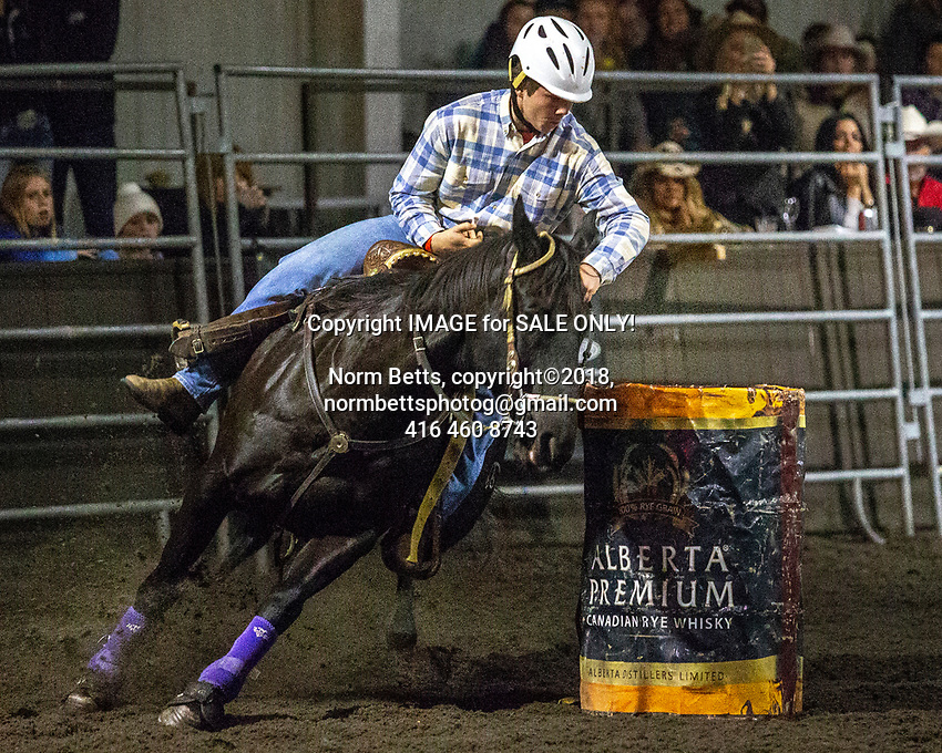 The season finals of Ontario's RAM Rodeo Tour.<br /> in Newmarket, Ontario, Canada 12, 13 &14 October, 2018<br /> Norm Betts, copyright©2018,<br /> normbettsphotog@gmail.com<br /> 416 460 8743