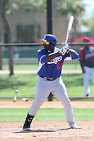 Justin Chigbogu #63 of the Los Angeles Dodgers bats during a Minor League Spring Training Game against the Cleveland Indians at the Los Angeles Dodgers Spring Training Complex on March 22, 2014 in Glendale, Arizona. (Larry Goren/Four Seam Images)