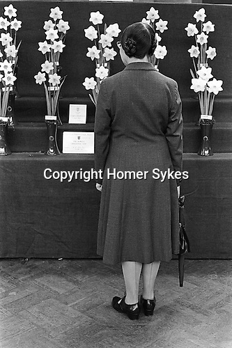 Royal Horticultural Society flower and vegetables show a middle aged woman with an umbrella contemplates the prize-winning daffodils.Victoria London 1968, 1960s UK