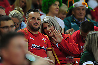Wales fans in action during the under armour summer series 2019 match between Wales and Ireland at the Principality Stadium, Cardiff, Wales, UK. Saturday 31st August 2019