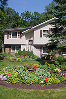 Front garden flowers for colorful curb appeal to house, with lawn grass, circular garden bed, annuals