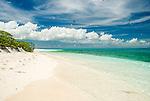 Cook Island bird sanctuary Christmas Island (Kiritimati), Kiribati