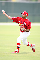 April 14, 2009:  Pitcher David Brito (44) of the St. Louis Cardinals extended spring training team during a game at Roger Dean Stadium Training Complex in Jupiter, FL.  Photo by:  Mike Janes/Four Seam Images