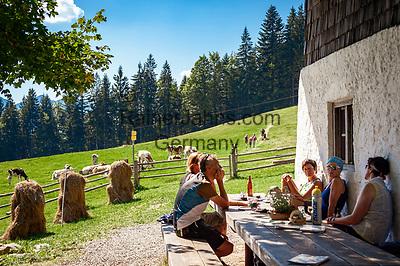 Deutschland, Bayern, Chiemgau, Inzell: auf der Baeckeralm   Germany, Upper Bavaria, Chiemgau, Inzell: alpine pasture hut Baeckeralm