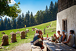 Deutschland, Bayern, Chiemgau, Inzell: auf der Baeckeralm | Germany, Upper Bavaria, Chiemgau, Inzell: alpine pasture hut Baeckeralm