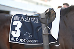 March 27 2021: KHAADEM (IRE) #3, in the post parade for the Al Quoz Sprint at Meydan Racecourse, Dubai, UAE. Shamela Hanley/Eclipse Sportswire/CSM