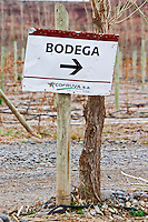 Sign with arrow to the bodega winery in the vineyard Bodega Del Anelo Winery, also called Finca Roja, Anelo Region, Neuquen, Patagonia, Argentina, South America
