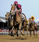 August 29, 2015 : Sheer Drama, ridden y Joe Bravo, wins the Personal Ensign Stakes on Travers Stakes Day in Saratoga Springs, NY. Scott Serio/ESW/CSM