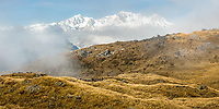 Foggy alpine, tussock high country with Southern Alps and its main highest peaks Aoraki Mount Cook, Mount Tasman and La Perouse, Westland Tai Poutini National Park, UNESCO World Heritage Area, West Coast, New Zealand, NZ
