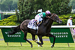 ELMONT, NY - JUNE 11: Flintshire, ridden by Javier Castellano, wins the Woodford Reserve Manhattan Stakes on Belmont Stakes Day before the 148th Belmont Stakes on June 11, 2016 in Elmont, New York. (Photo by Sue Kawczynsk/Eclipse Sportswire/Getty Images)
