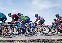With strong crosswinds, the peleton fractures into many (9 through the feedzone) pockets of riders and makes for fierce racing form start to finish at (very) high average speeds.<br /> This is the 1st group, containing Nairo Quintana (COL/Movistar) who will virtiually (and at th efinish) climb up to 2nd in the GC as he trumps his teammate Valverde who is kept behind in the GC group.<br /> <br /> Stage 17: Aranda de Duero to Guadalajara (220km)<br /> La Vuelta 2019<br /> <br /> ©kramon