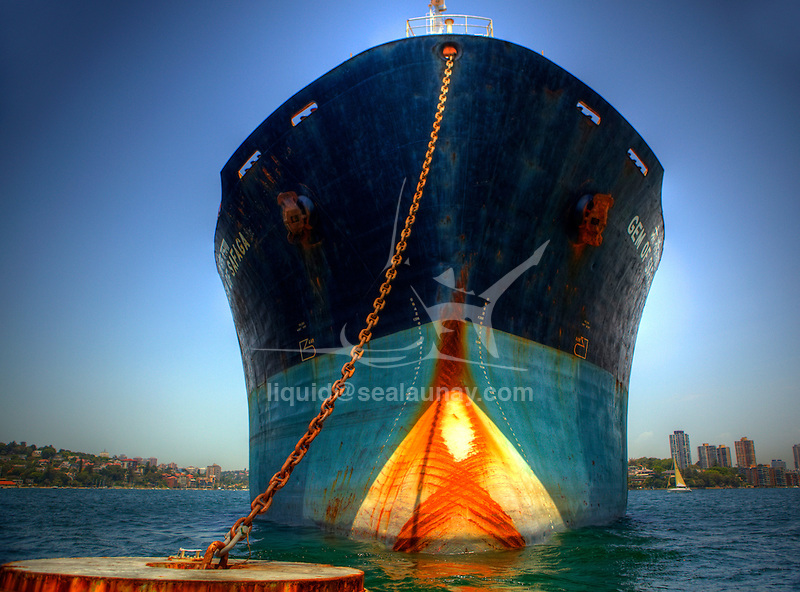 """The 65,163-tonne Gem of Safaga arrived in Port Kembla on November 3 and was placed under arrest..""""The ship is currently the subject of a charter dispute between a UK charterer and its owners in India,"""" according to a statement from the Sydney Ports Corporation. """"The ship was placed under arrest in Port Kembla for the alleged non-payment of charter fees. The ship is under the control of the Federal Marshal."""""""