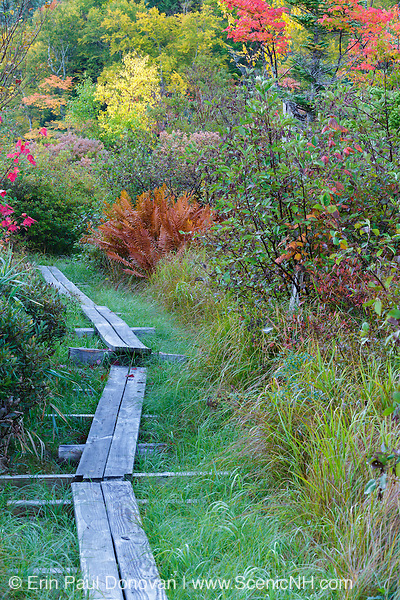 Foot path along Echo Lake in Franconia Notch State Park of the New Hampshire White Mountains during the autumn months.
